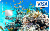 Visa World Card Photo